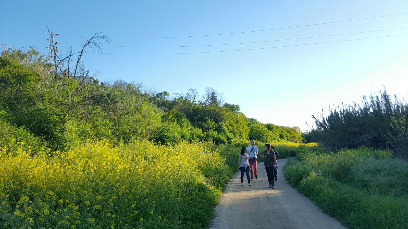 Paseando por el Corredor Verde del Guadiamar